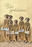 A4 Maxi Geburtstagskarte Erdmännchen Wir gratulieren Glückwunsch Von uns allen