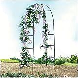 gloriette de jardin arche tuteur pour rosiers fleurs et plantes grimpantes cuisine. Black Bedroom Furniture Sets. Home Design Ideas