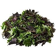 Vitacress Baby Leaf Kale, 80g