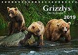 Grizzlys - Der Kalender CH-Version (Tischkalender 2019 DIN A5 quer): Grizzlybären - ein Fotoshooting in der Wildnis Alaskas (Geburtstagskalender, 14 Seiten ) (CALVENDO Tiere) - Max Steinwald