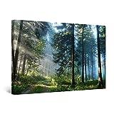 Startonight Quadro su Tela Strada nella Foresta, Stampe Incorniciato e Pronta da Appendere Design Moderno Arredamento Arte Fotografia Grande Formato 80 x 120 CM