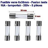 5x lot Fusibles verre 6x30mm fusion lente - temporisé - T15A - 15A - 250v - 80fus163