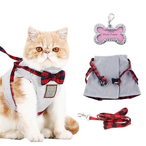 Bwogue Katzen Weste Geschirr Mit Passenden Führen Leine Und id - Tag, Verstellbare Komfortablen Soft Mesh nNutzen Für Katzen In Sicherheit Zu