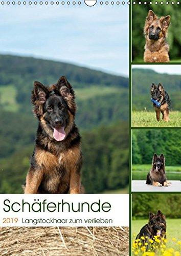 Schäferhunde Langstockhaar zum verlieben (Wandkalender 2019 DIN A3 hoch): Langhaar Schäferhunde...