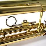 kaerntner Trompette ktr-30/GD or