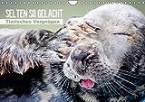 Selten so gelacht - Tierisches Vergnügen (Wandkalender 2014 DIN A4 quer): Ein Schabernack für Groß und Klein (Monatskalender, 14 Seiten)