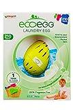 Ecoegg Wäscheei (54Wäschen), Fragrance Free, 210 Washes