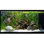 TM Aquatix Aquarium Sand White Fish Tank Substrate Natural Silica 0,5-0,8mm / 5kg 14