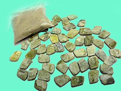 Preisvergleich Produktbild Sinai,  50 Bodenfliesen & Sand