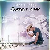 Songtexte von Dustin Lynch - Current Mood