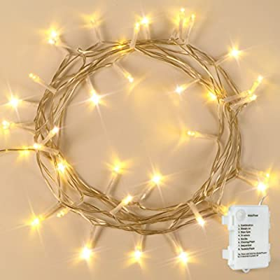 Battery Operated 40 LED Fairy String Lights EF