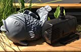 Wasserspiel Fisch inkl. Pumpe | Wasserspeier | Set Speier | Teichfigur