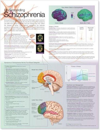 Understanding Schizophrenia Anatomical Chart