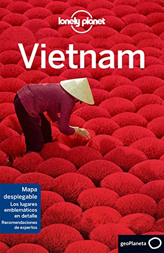 Vietnam 8 (Guías de País Lonely Planet)