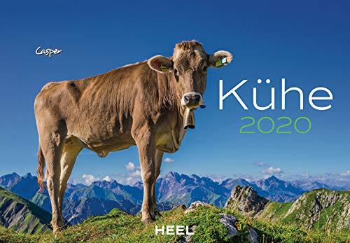 Kühe 2020: Der Sympathische Kühe-Kalender mit den charmanten Namen - Kuh Melken Der