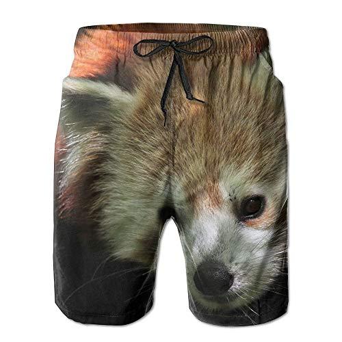 Wild Fox Vulpe Schnelle Trockene Spitze Boardshort Strand Shorts Hosen Badehose Amüsant Mann Badeanzug Mit Taschen,Größe XL