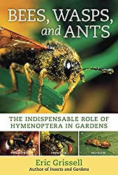 Bees, Wasps, and Ants: The Indispensable Role of Hymenoptera in Gardens by Eric Grissell (2010-06-30)