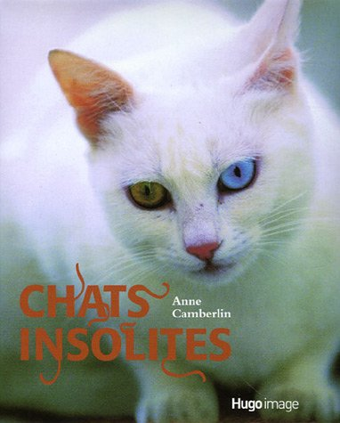 CHATS INSOLITES par ANNE CAMBERLIN