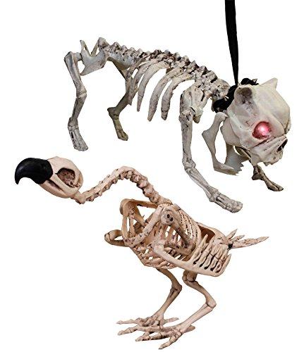 Paare Katze Kostüm Hund (HUND UND AASGEIER GERIPPE IN HARTPLASTIK = VON ILOVEFANCYDRESS®= TOLLE HALLOWEEN DEKORATION = DIESES KATZEN SKELETT BEKOMMEN SIE NUR BEI UNS= KATZEN IST AUS HART PLASTIK = SKELETT MIT BELEUCHTETEN)