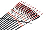 12x Spine 500 Natural Feathered Carbon Arrows - Best Reviews Guide