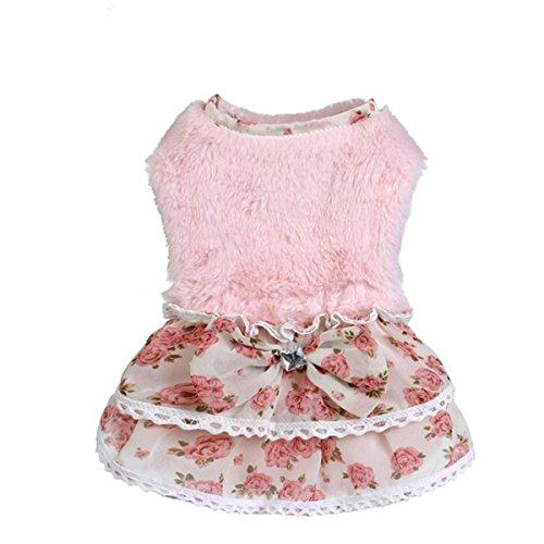PLHF Edelstein Rock Herbst und Winter Hunde schön Warm halten Prinzessinenkleid Teddy Kleidung, Pink, 16
