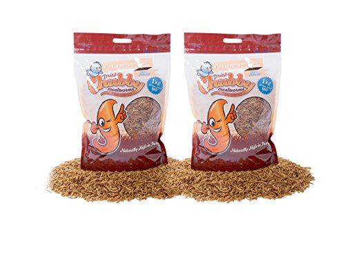 2kg-chubby-dried-mealworms-with-free-delivery-for-wild-birds-other-animals