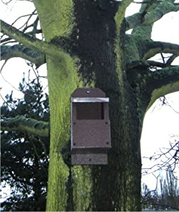 Bird Nest Box open front for Robins by SignLine