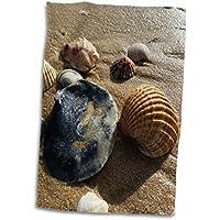 3dRose Imagen de Conchas de Algarve Portugal Toalla, 38 x 55 cm