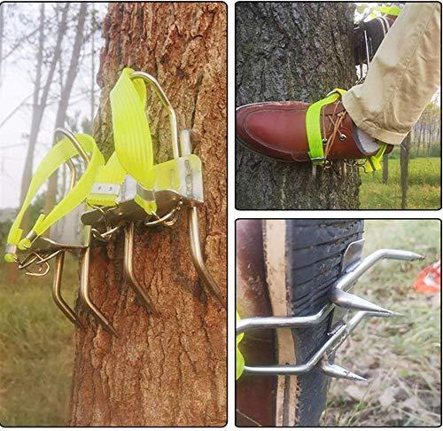 TREES Rutschfeste Kletternde Baum-Spitzen, Baum-Kletterndes Werkzeug, Baumsteigeisen Kletterhilfen Forstzubehör,Sicherheit Uverlässig,B+Seatbelt
