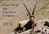 Steinwild in den Schweizer Voralpen (Wandkalender 2018 DIN A2 quer): Besuchen Sie die Steinböcke am Pilatus. (Monatskalender, 14 Seiten ) (CALVENDO Tiere) [Kalender] [Apr 01, 2017] W. Saul, Norbert