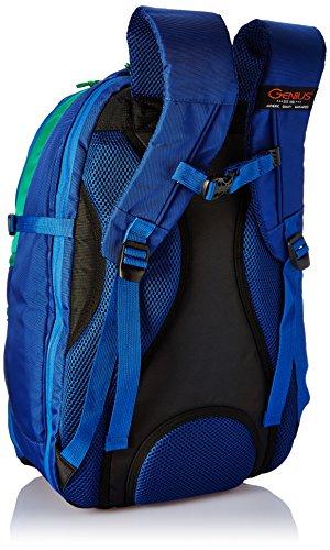 Best supreme backpack in India 2020 Genius Nylon 39 Ltrs Blue Trekking Backpack (Supreme Blue 52) Image 2