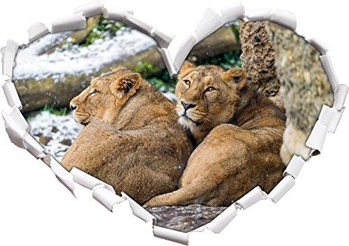 Dormire a forma di cuore di leone femminile nel formato
