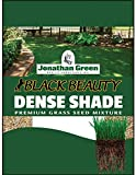 Shade Grass Review and Comparison