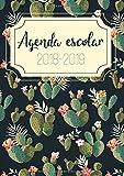 Agenda Escolar 2018 - 2019: Para el nuevo año académico 2018-2019 - El calendario semestral y planificador de estudios
