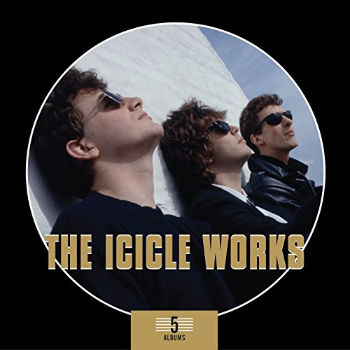 the Icicle Works: 5 Albums Box Set (Audio CD)