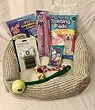 Starter-Set für Hunde/Welpen, mittelgroßes Hundebett, Spielzeug, Halsband und Leine