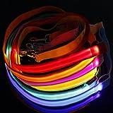 LED Hundeleine Hundegeschirr Hund Leine Leuchtleine Emittierende Rope Harness Kette Belt Haustier Dog Pet Leash Nylon Blau
