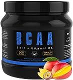 GYM-NUTRITION® — BCAA + VITAMIN B6 – Amino-Säuren hochdosiert, vegan – Leucin, Isoleucin, Valin – 2:1:1 Aminosäure-Pulver – Made in Germany – Geschmack: MANGO-MARACUJA — EINWEG