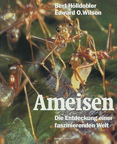 Ameisen. Die Entdeckung einer faszinierenden Welt