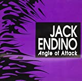 Songtexte von Jack Endino - Angle of Attack