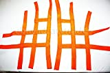 Nerfbar Fussgitter Nervbar Netz Textil Shineray 250STXE Nets Foot Peg ATV Quad Orange
