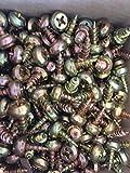 10 Stck Nippelschraube/Klemmnippel für Rollladenführungsschienen passend Salamander