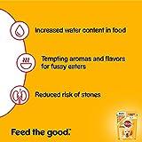 Pedigree Junior Hundefutter Huhn und Reis in Gelee, 24 Beutel (24 x 100 g) - 6