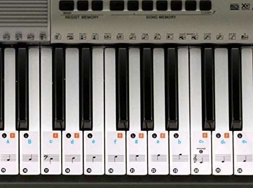 Piano adhesivo 49 / 61/ 76 / 88 llave teclados –