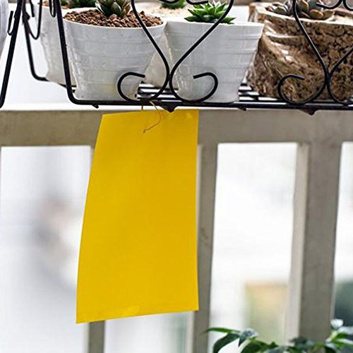 51Q6pso85SL. SS500  - Lumanuby 10 Sheet/Set Sticky Insect Board Yellow PVC Plastic Dual-Sided Sticky Board Garden Fly Traps for Plant Insect…