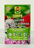 DUAXO PPO FUNGICIDA SISTEMICO PER PIANTE ORNAMENTALI CONFEZIONE DA 100 ML