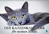Der Katzenkalender für meinen Schatz (Wandkalender 2019 DIN A3 quer): Besinnliche und heitere Lebensweisheiten für Katzenliebhaber (Monatskalender, 14 Seiten ) (CALVENDO Tiere)