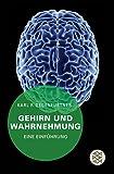 Image de Gehirn und Wahrnehmung: Eine Einführung