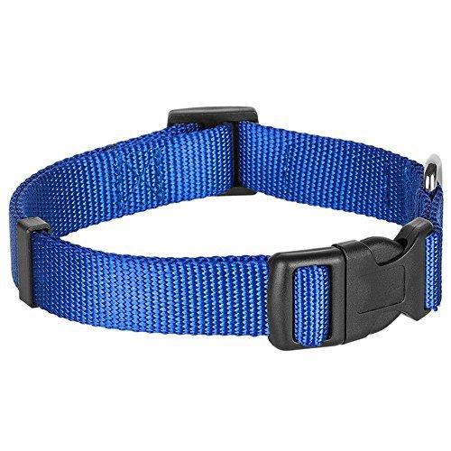 Blueberry Pet Hundehalsband Klassisch Einfarbig 2 cm M Basic Polyester Nylon Hundehalsband Langlebig – Royalblau, Passender Hundegeschirr & Hundeleinen erhältlich separate - 3