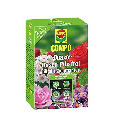 compo-17783-fungicida-champinon-130-ml